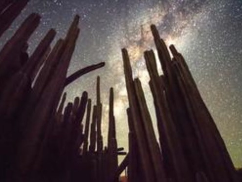 Namibia's Starry Deserts
